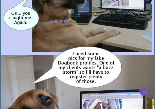 Xsara, Diaries of a SEO dog #5