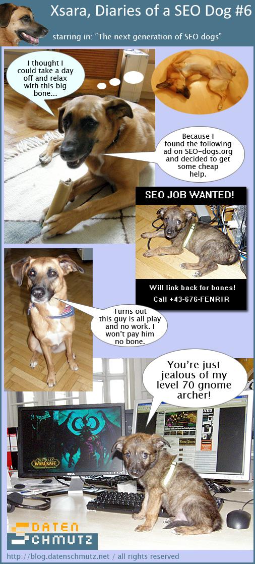 Xsara diaries of a SEO dog #6