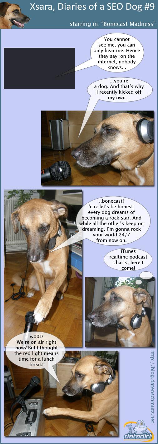 Xsara, Diaries of a SEO Dog #9
