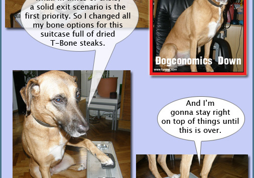 Xsara, Diaries of a SEO Dog #8