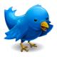 Mehr Followers kriegen: die Twitter Auto-Follow-Liste