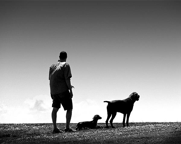 hundewoche