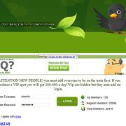 Twitter Trains: Von Follower-Käufen und Phishing-Problemen