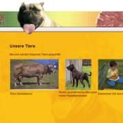 Hundefleisch vom Alanohof