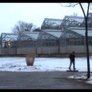 Elektrisch angetriebenes Winter-Raupen-Skateboard