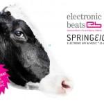 Springeight-Overview: Nur mehr 2 Tage!