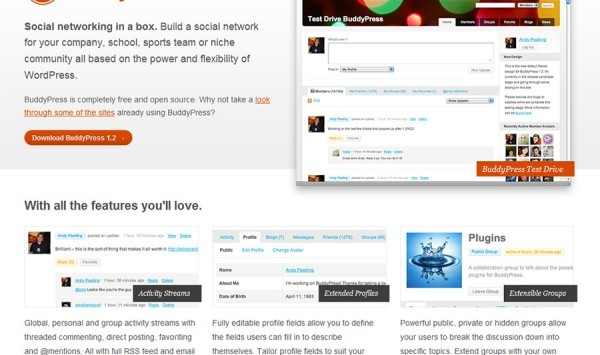 Aus WordPress ein Social Media Network machen