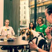 PR Camp 2014: Inspiration für Public Relations Experten