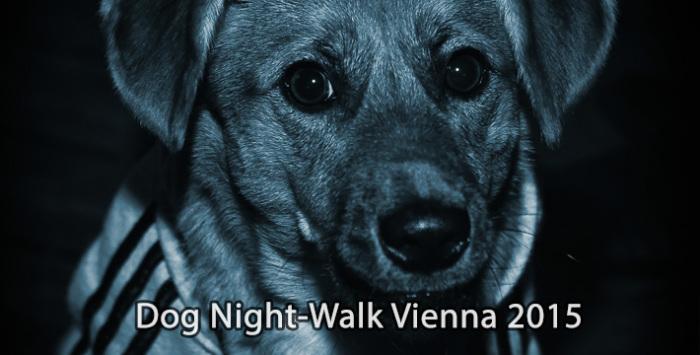 Wiener Hunde flanieren über den Ring.