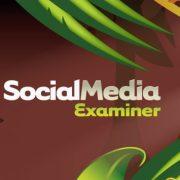 Social Media Examiner Industry Report 2017