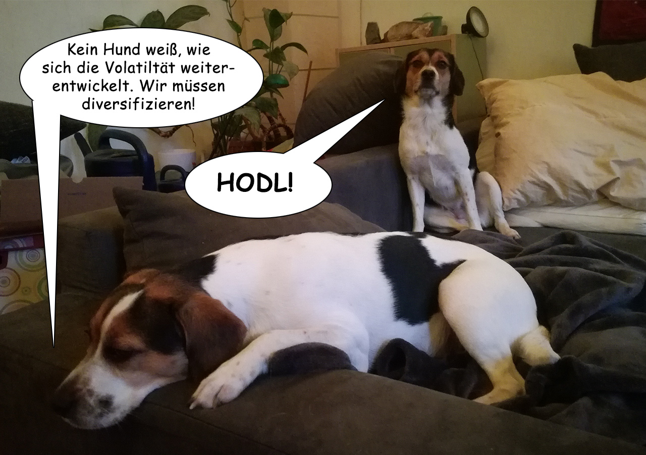 Hodler Dogs - Ein Bitcoin Cartoon - Frame 2