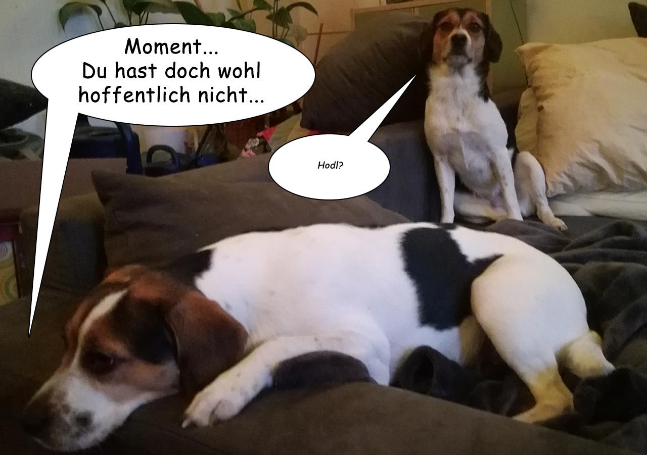Hodler Dogs - Ein Bitcoin Cartoon - Frame 3