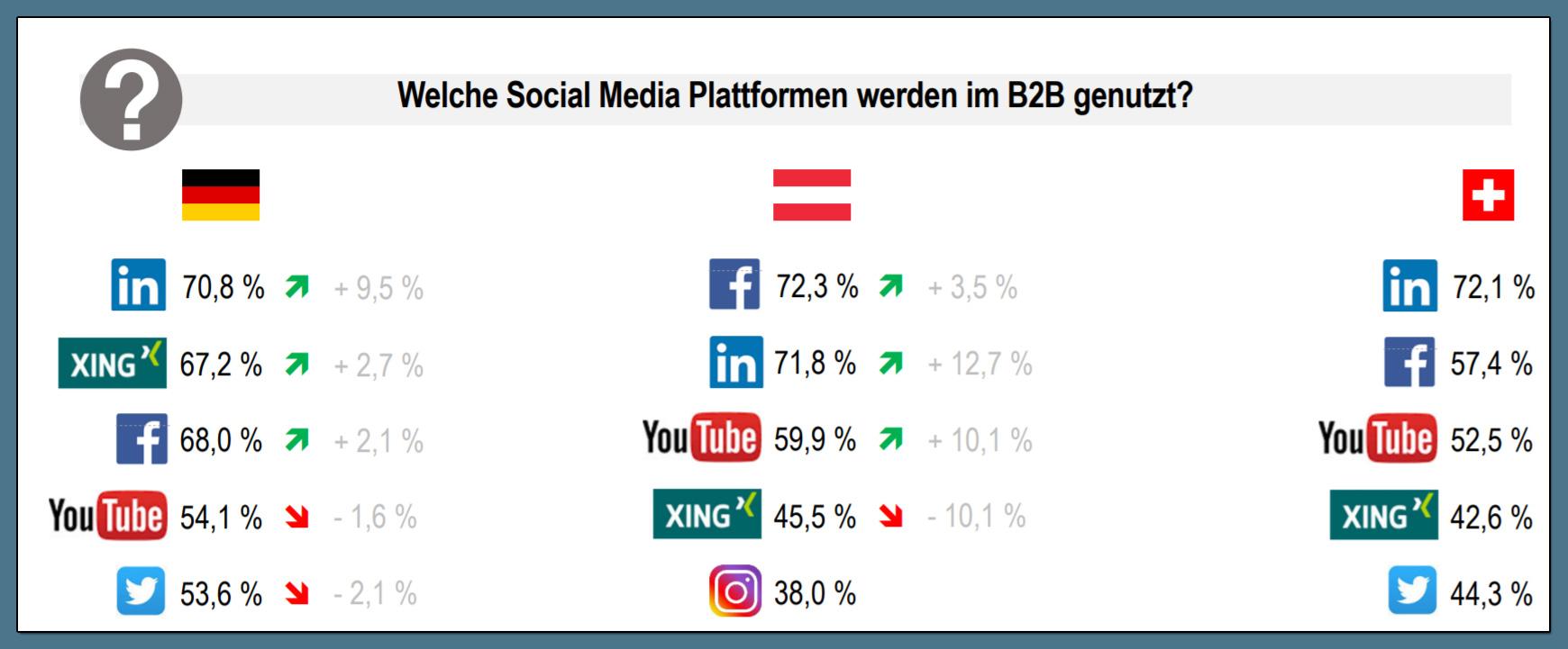 Welche B2B Social Media Plattformen werden genutzt?