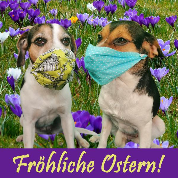 Fröhliche Ostern 2020!